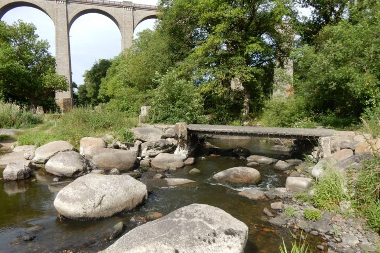 Photo de la Sèvre nantaise, pont de Barbin, Vendée